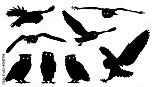 Poster Owls cartoon owl silhouettes