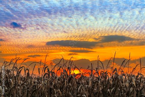 Photo  Indiana Sundown