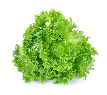 Green Lettuce Isolated On The ...