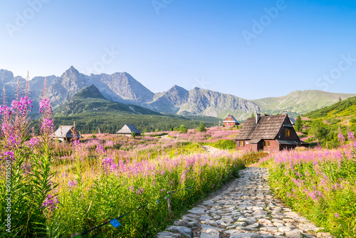 Fotografía  Wooden huts scattered on flowery meadow
