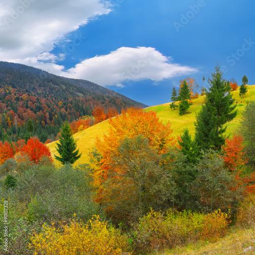 Aluminium Prints Autumn bright sunny autumn in the mountains