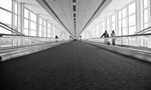Airport Architecture Escalator Movement