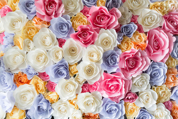FototapetaBackdrop of colorful paper roses