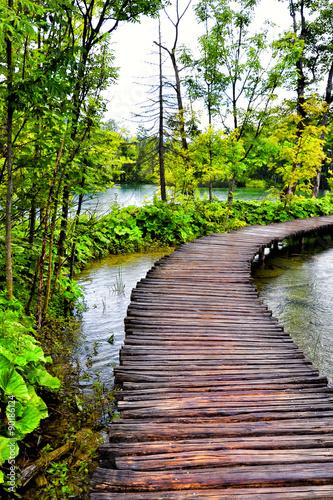 Plitvice lakes Croatia - 90186124