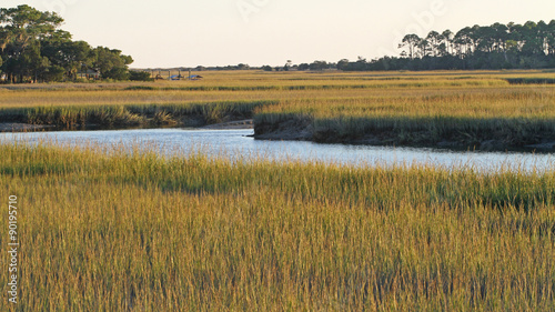 Fototapeta  South Carolina Salt Marsh