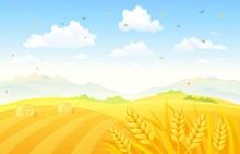 Autumn Fields Background