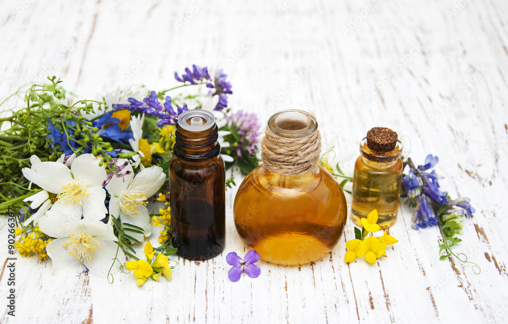 Fototapety, obrazy: Nature oil with wildflowers