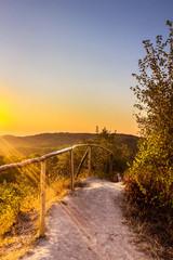 Fototapeta Optyczne powiększenie Exciting sunrise over fogged park, aerial view, Lviv