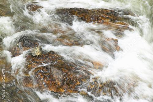 Fotografía  Running water beneath Pines as creek runs through Payette national Forest near M