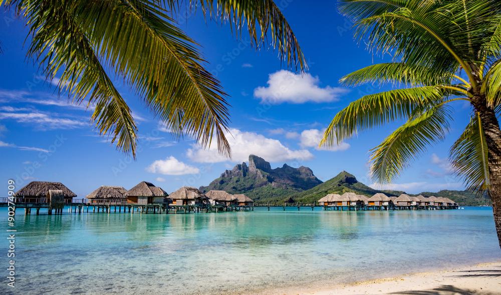 Fototapeta Bora Bora framed by palm trees