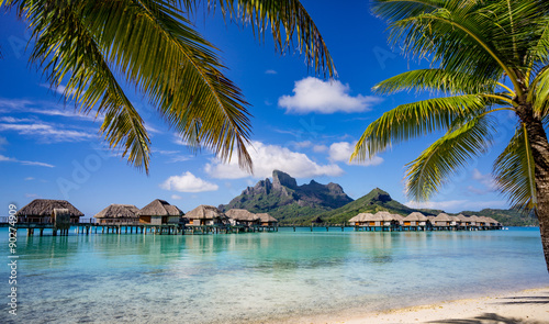 plakat Bora Bora framed by palm trees