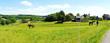 Pferdekoppel Panorama