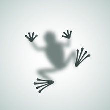 Diffuse Frog Silhouette Shadow...