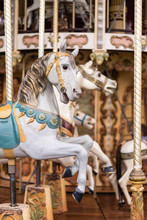 Carousel At The Park
