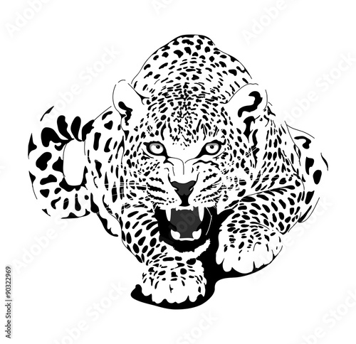 Photo  Leopard in black interpretation