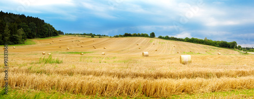 Montage in der Fensternische Landschappen Field of grain.