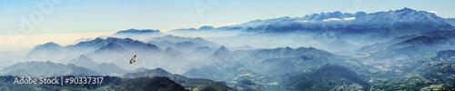 Hochgebirge mit Gänsegeier im Nebel (Picos de Europa, Asturien, Spanien)