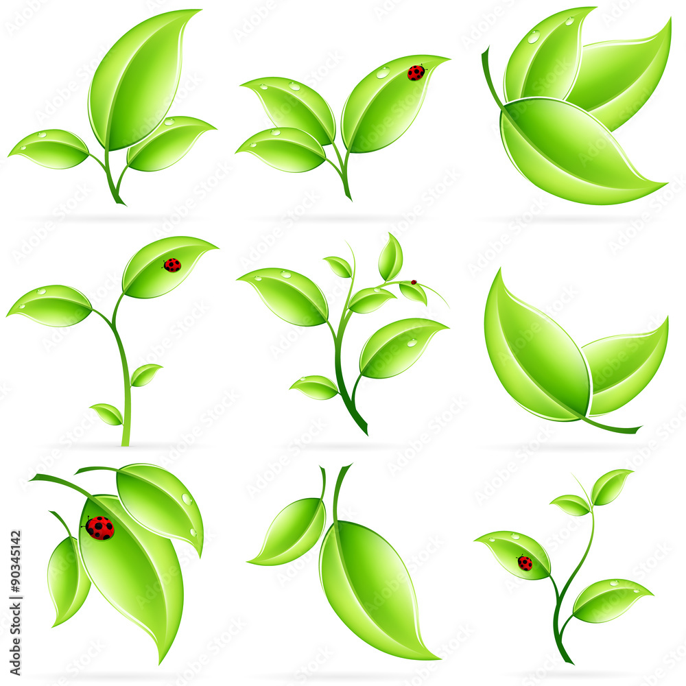 Leinwandbild Motiv - WaD : Fresh Green Leaves Icon Set