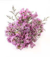 Statice Flower Bouquet  On White Background