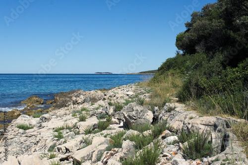 Foto op Canvas Cathedral Cove Blick entlang einer Felsenküste