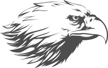 Eagle Head Vector - Side View ...