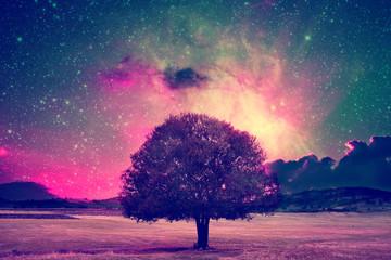 Naklejka na ściany i meble fairy tree landscape