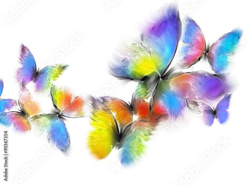 Fototapeta butterflies