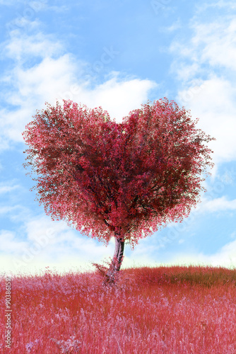 Fototapety, obrazy: Red tree in heart shape, outdoors