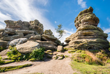 Weathered Brimham Rocks