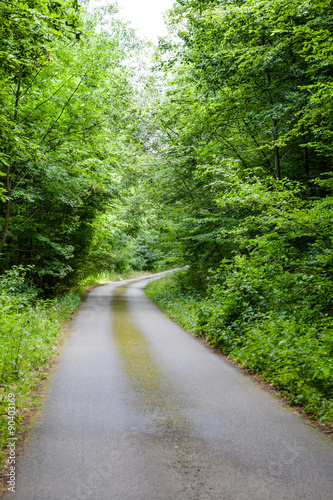 Foto op Canvas Weg in bos Scenic road through the forest