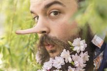 Flowers Bearded Liar