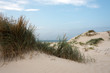 sand and marram at heligoland dune