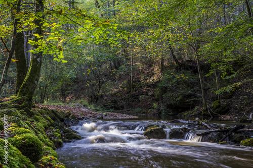 Fototapety, obrazy: Maisinger Bach rauscht durch die bewaldete Maisinger Schlucht