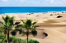 Sand Dunes Of Maspalomas. Gran...