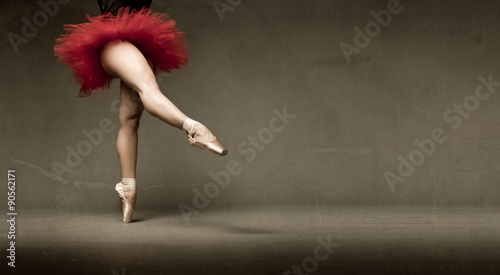 Obraz na plátně ballerina with tutu indicated with foot