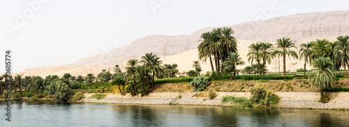 Stickers pour porte Riviere Nile shore in nature
