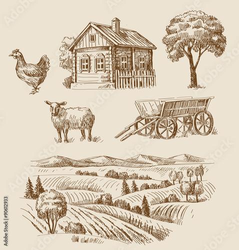 Foto  farm and animals hand drawn