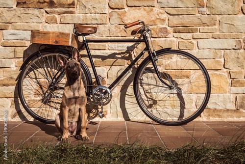 Poster Fiets Vintage bike