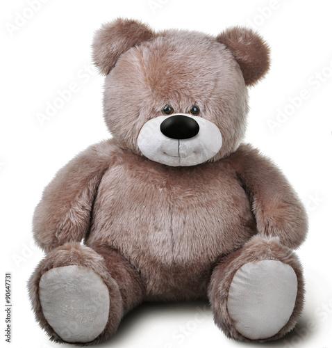 Toy soft teddy bear Wall mural