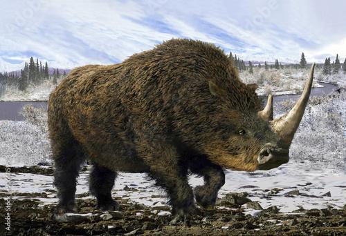 Fototapeta premium Nosorożec włochaty / Kolaż reprezentatywny dla plejstocenu - nosorożec włochaty na tle zimowej tundry.