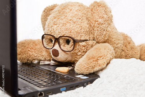 Fotografie, Obraz  Funny bear in glasses lying works at the computer