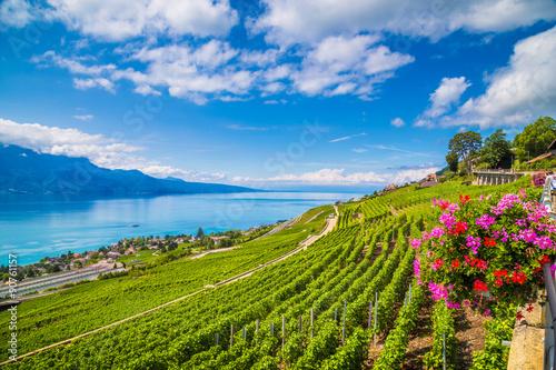 Cuadros en Lienzo Beautiful Lavaux wine region at Lake Geneva, Canton of Vaud, Switzerland