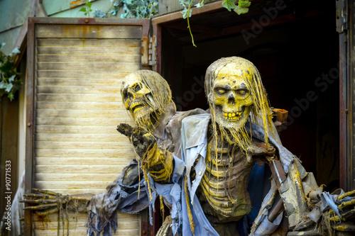 Fotografie, Obraz  Halloween duch Haunted House