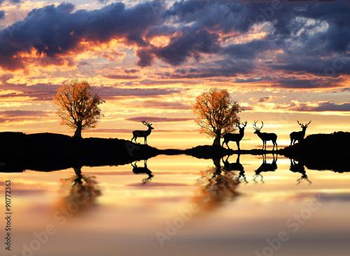 ciervos en la orilla del lago