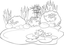 Coloring Pond