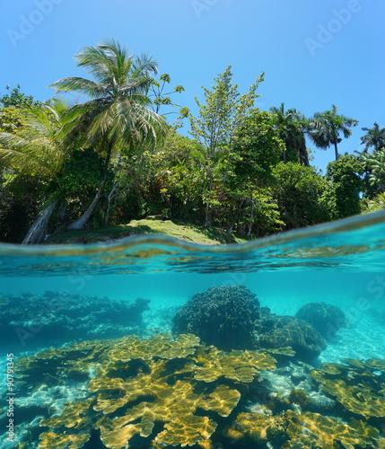 Spoed Foto op Canvas Eiland Split image tropical shore and corals underwater