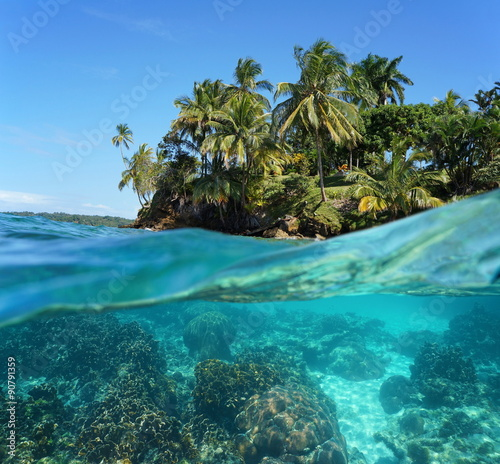 Spoed Foto op Canvas Eiland Tropical island with corals underwater