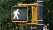 Manhattan Walk Don't Walk Sign