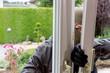 canvas print picture - Einbrecher an einem Fenster
