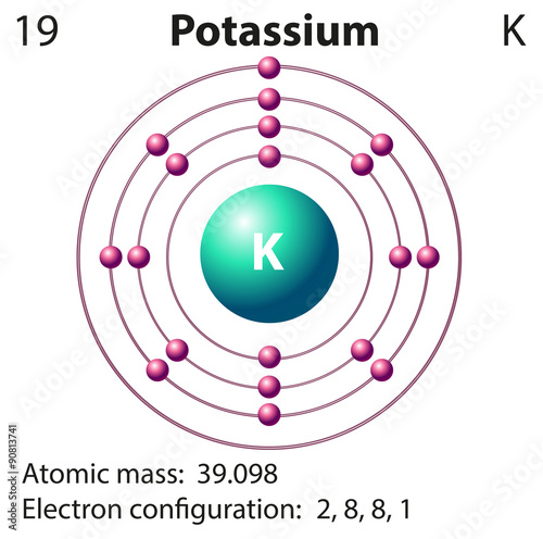 an examination of the element potassium Overview information potassium is a mineral that plays many important roles in the body food sources of potassium include fruits (especially dried fruits), cereals, beans, milk, and vegetables.